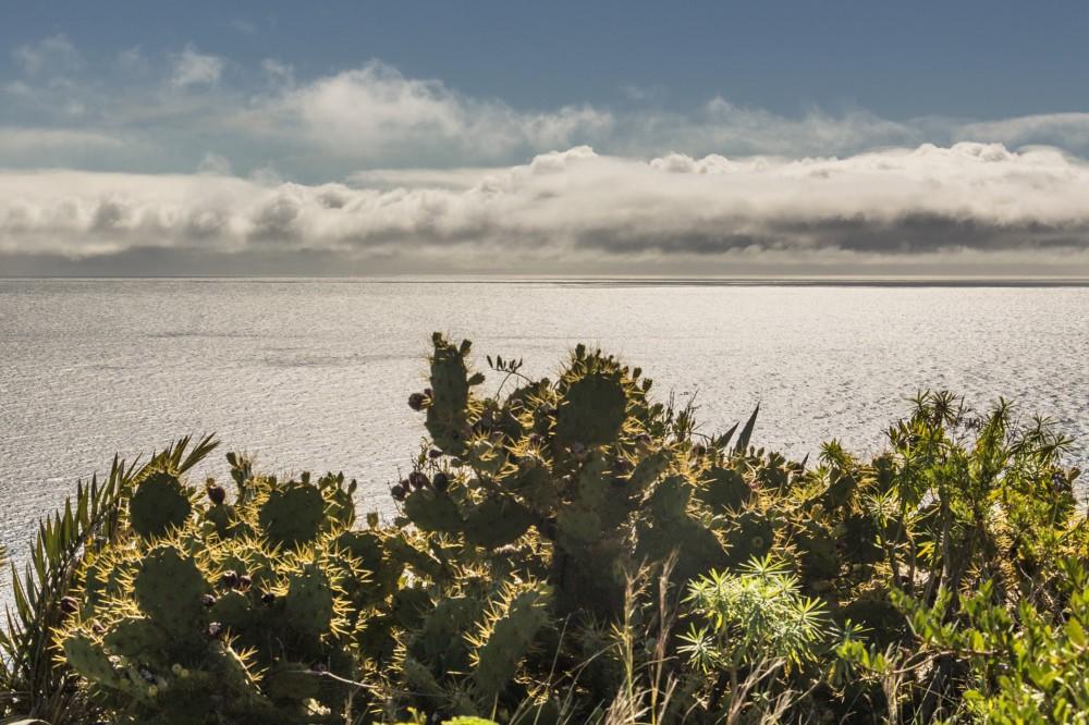 La Palma Island 1
